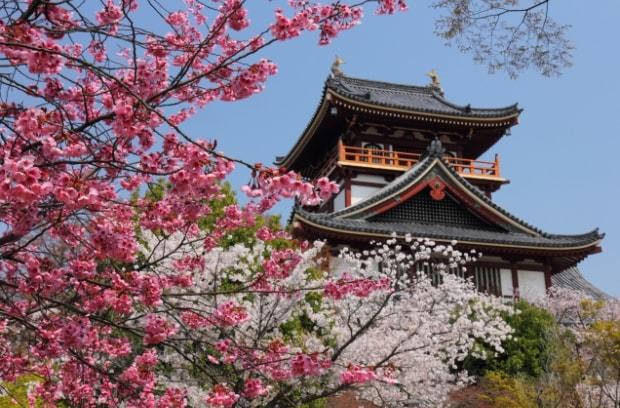 伏見桃山で七五三記念撮影